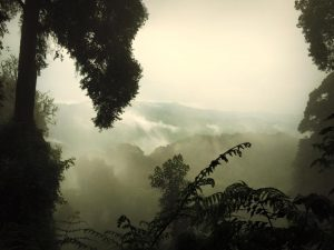 rwanda_hills_1